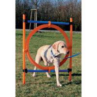 Trixie Dog Agility training ring, orange & blue