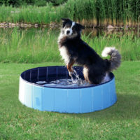 Trixie Dog Pool, Blue