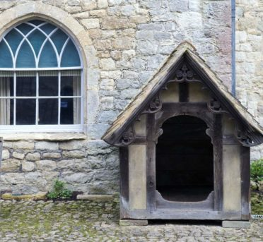 Puprise Post - Best Pets Blog India - Types of Dog Houses - Indoor and Outdoor Use